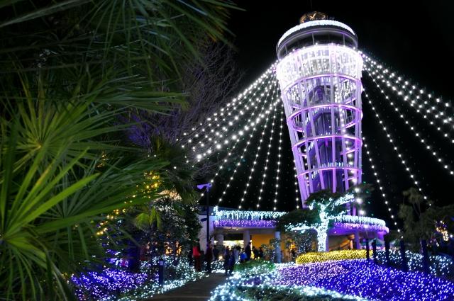 江ノ島イルミネーション2019-2020!開催期間や点灯時間は?