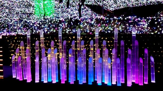 西武遊園地イルミネーション2019-2020!開催期間や点灯時間は?